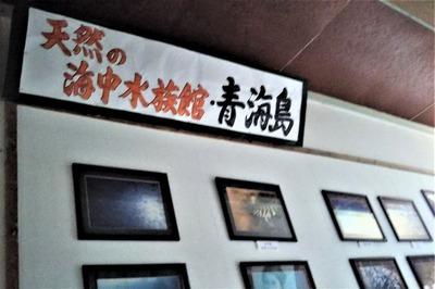天然の海中水族館・青海島.jpg