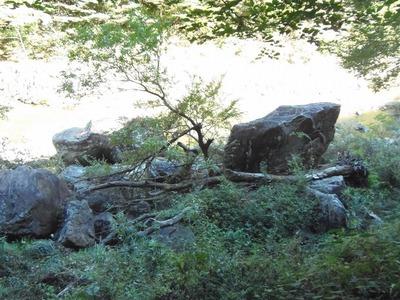 夫婦岩2.jpg