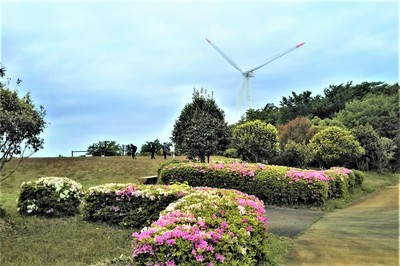 妙見山公園2.jpg