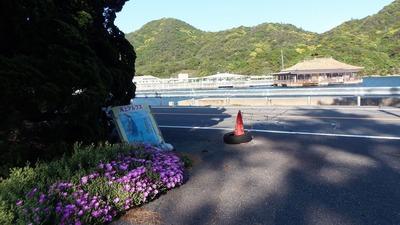 季節の花と旧会場レストラン紫津浦.jpg