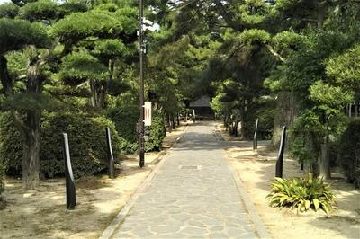 学びの道2.jpg
