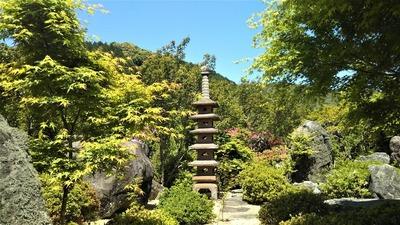 安藤庭園7.jpg