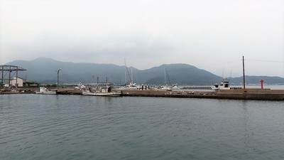 小島4.jpg