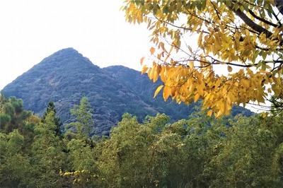 尖山と秋色2.jpg