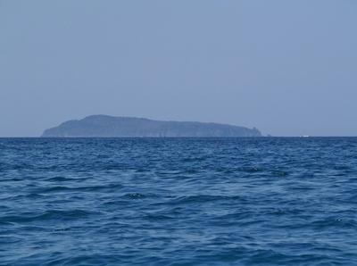 尾島.jpg