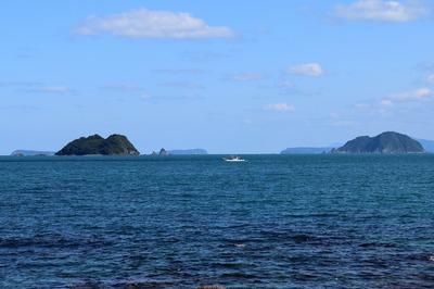 尾島・笹島・肥島・羽島・鯖島.jpg