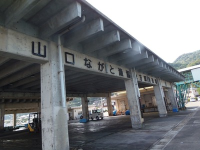 山口ながと漁協野波瀬魚市場.jpg