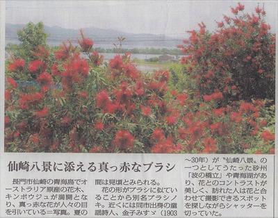 山口新聞・金宝樹8.5.26.jpg