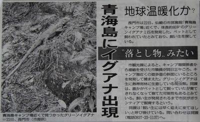 山口新聞記事.jpg
