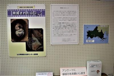 山口県埋蔵文化財センター巡回展〜発掘された山口〜2.jpg