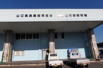 山口県漁業協同組合・仙崎地方卸売市場1.jpg