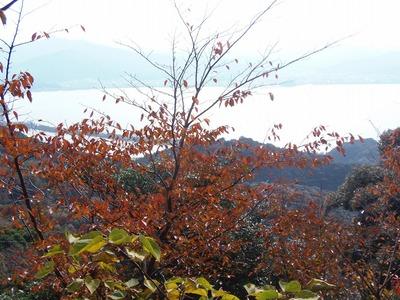 山頂の秋色.jpg