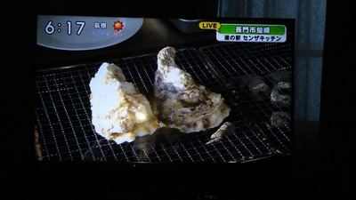 岩がき2.jpg