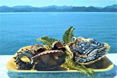 岩がき、ヒオウギ貝、サザエ.jpg