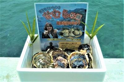 岩牡蠣3kg.jpg