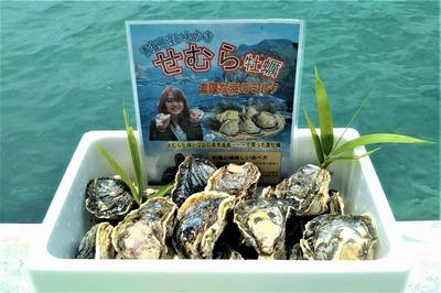 岩牡蠣6kg.jpg