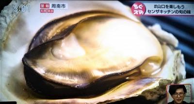 岩牡蠣8.jpg