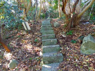 川尻岬灯台への道1.jpg