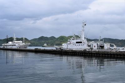 巡視船「おおみ」と実習船「海友丸」.jpg