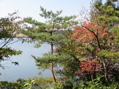 常盤湖の秋2.jpg