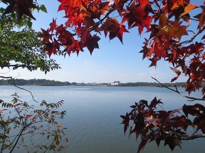 常盤湖の秋4.jpg