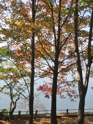 常盤湖の秋6.jpg