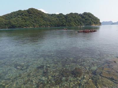幸島と透き通った海.jpg