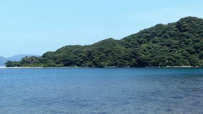 幸島の西側.jpg