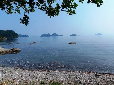 幸島・青海島・大島・笹島・・・鯖島.jpg