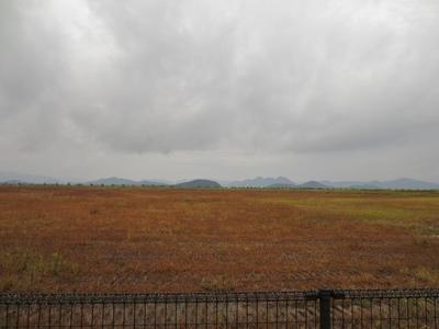 広大な草原.jpg