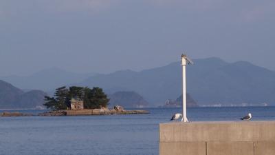 弁天島とカモメ.jpg