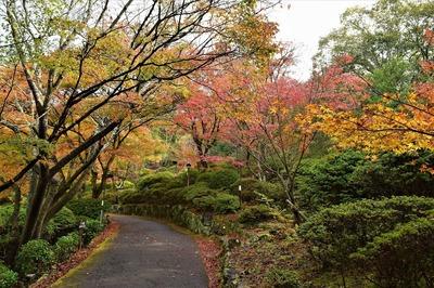御船山楽園の秋色7.jpg