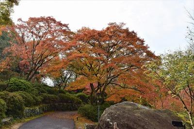 御船山楽園の秋色9.jpg