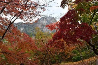 御船山楽園の紅葉2.jpg