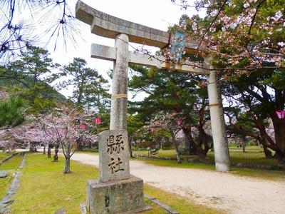 志都岐山神社鳥居.jpg