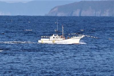 戻り漁船1.jpg