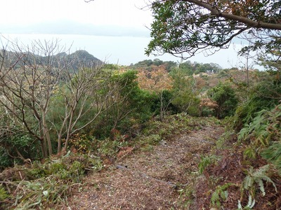 整備された登山道1.jpg