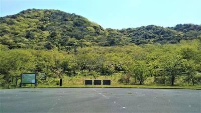 新緑の青海島さくらの里1.jpg