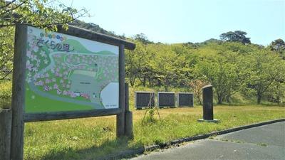 新緑の青海島さくらの里2.jpg