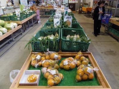 新鮮果物・野菜.jpg