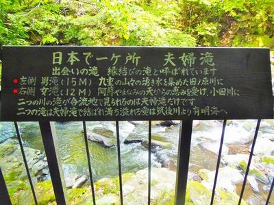 日本で一ヶ所.jpg