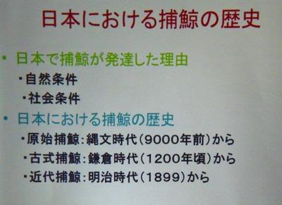 日本における捕鯨の歴史.jpg