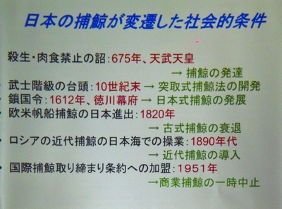 日本の捕鯨が変遷した社会的条件.jpg
