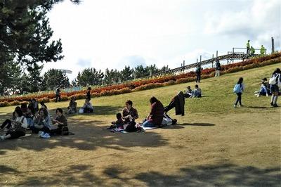 日本一長い竹のコースター3.jpg