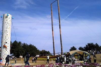 日本一高い木のブランコ2.jpg