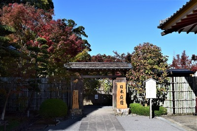 日本庭園.jpg