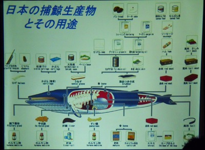 日本捕鯨生産物とその用途.jpg