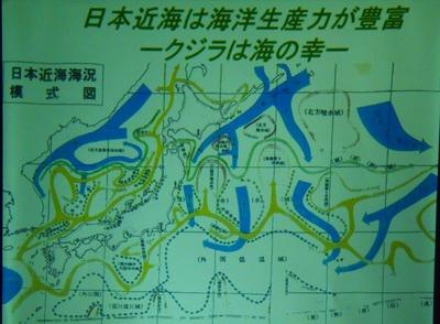 日本近海は海洋生産力が豊富.jpg