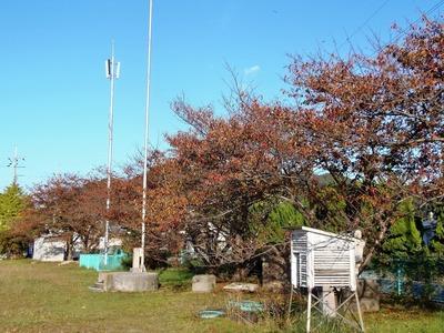 旧青海島小学校2.jpg