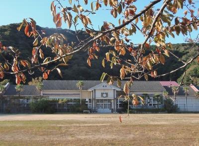 旧青海島小学校の秋色1.jpg
